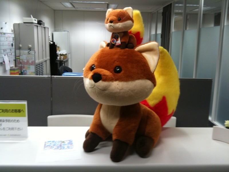 foxkeh.jpg